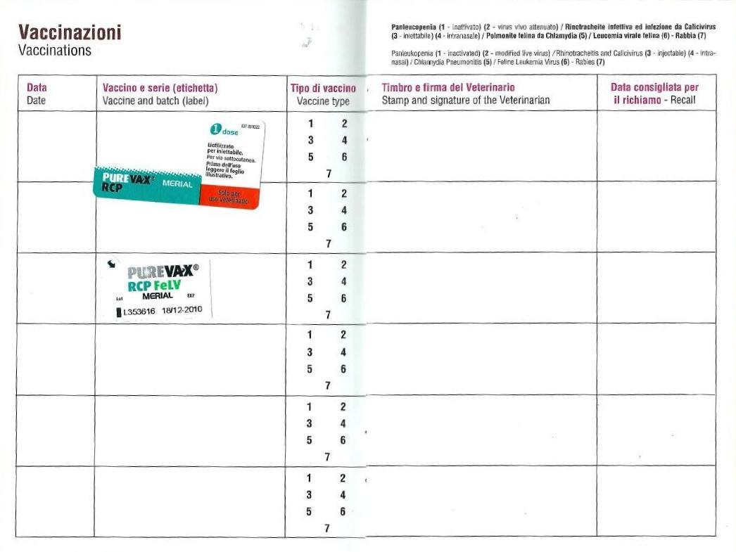 Sito ufficiale del comune di cinisello balsamo ambiente - Libretto sanitario per lavoro cucina ...