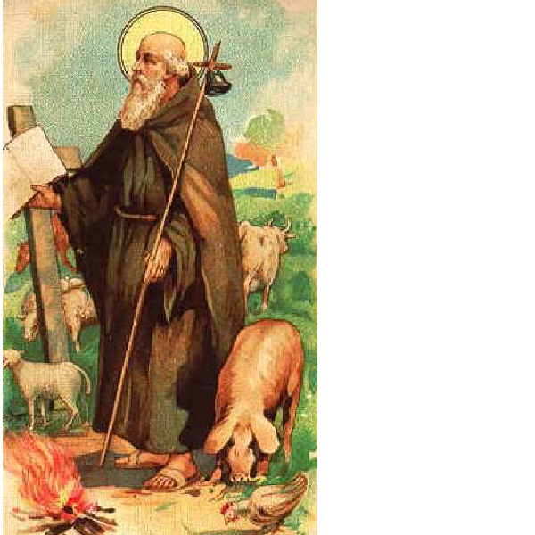 Le pietre raccontano for Arredo bimbo sant antonio abate